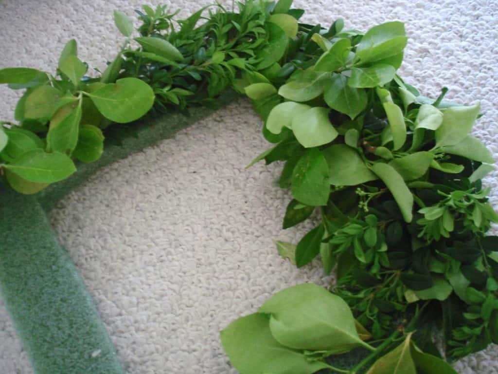 DSC02612 1024x768 boxwood wreath {a tutor