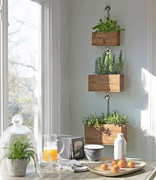 herb plant boxes near window north carolina home 0512 xln home tour {diy north carolina home}