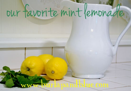 DSC 0024 copy our favorite mint lemonade recipe