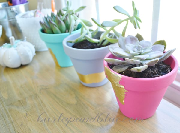 craft room gold foil planters