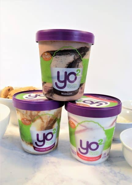 kemps frozen yogurt